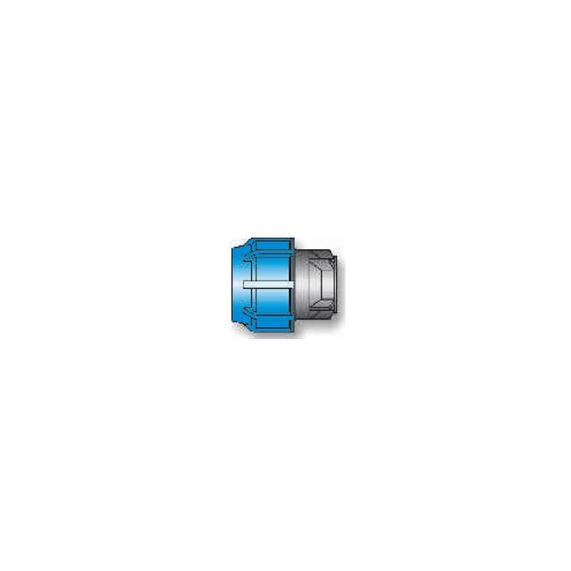 Bouchons 16941 D50