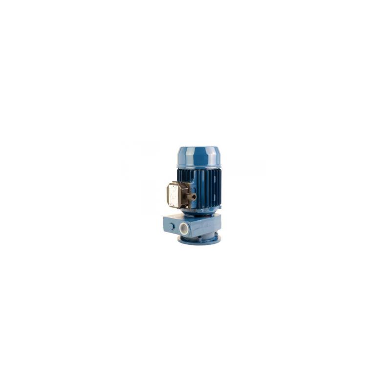 Pompes verticale a canal latéral 380V - 0.74Kw