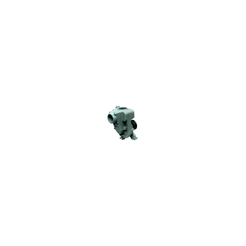 Electropompe centrifuge auto-amorçante, série à arbre nu, 5.5Kw, 3'